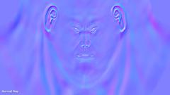 Head - Normal Texture